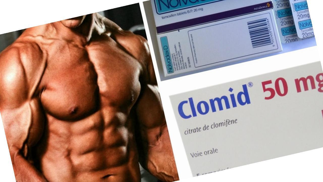 Top 25 Quotes On miglior multivitaminico bodybuilding
